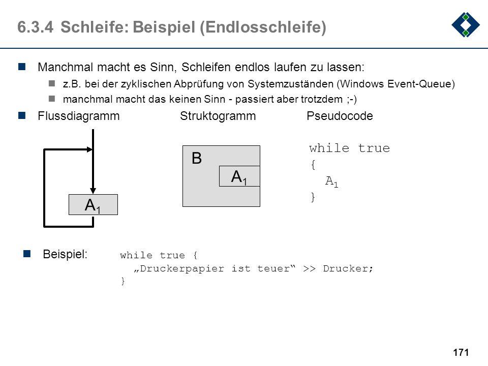 6.3.4 Schleife: Beispiel (Endlosschleife)