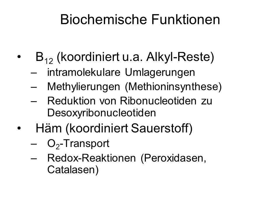 Biochemische Funktionen