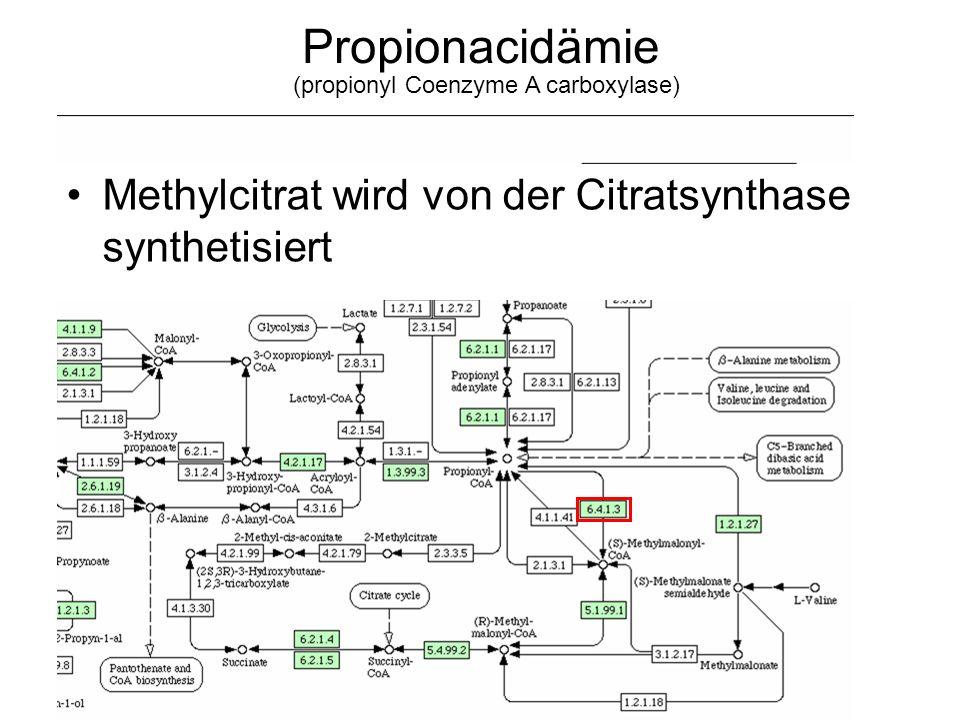 Propionacidämie Methylcitrat wird von der Citratsynthase synthetisiert