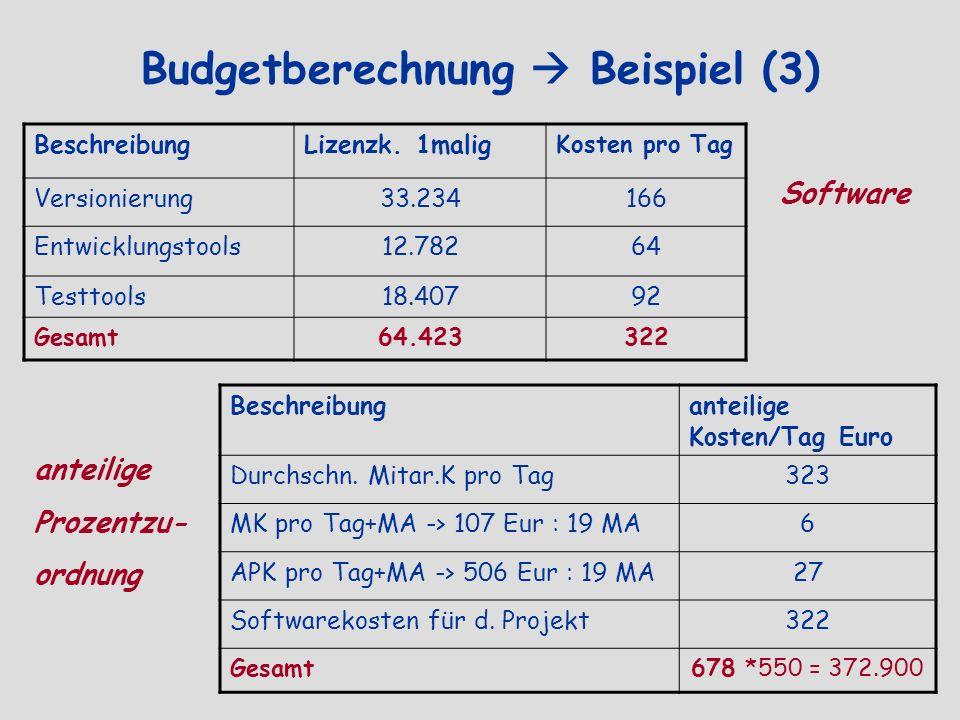 Budgetberechnung  Beispiel (3)