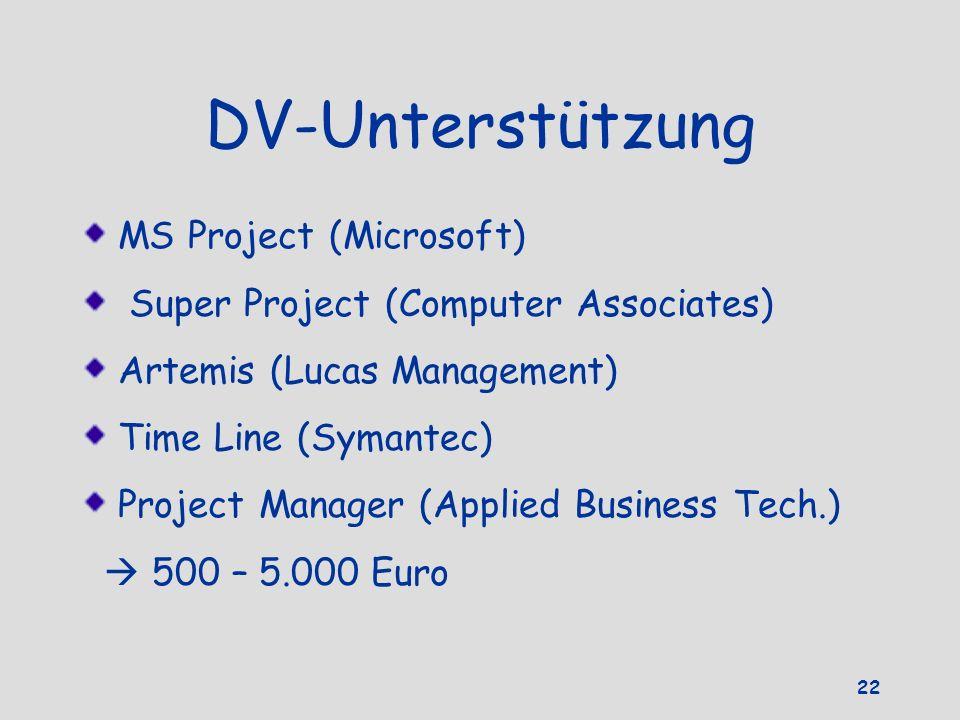 DV-Unterstützung MS Project (Microsoft)