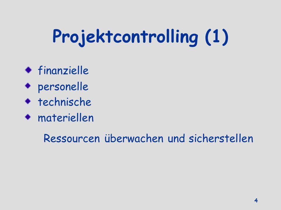 Projektcontrolling (1)