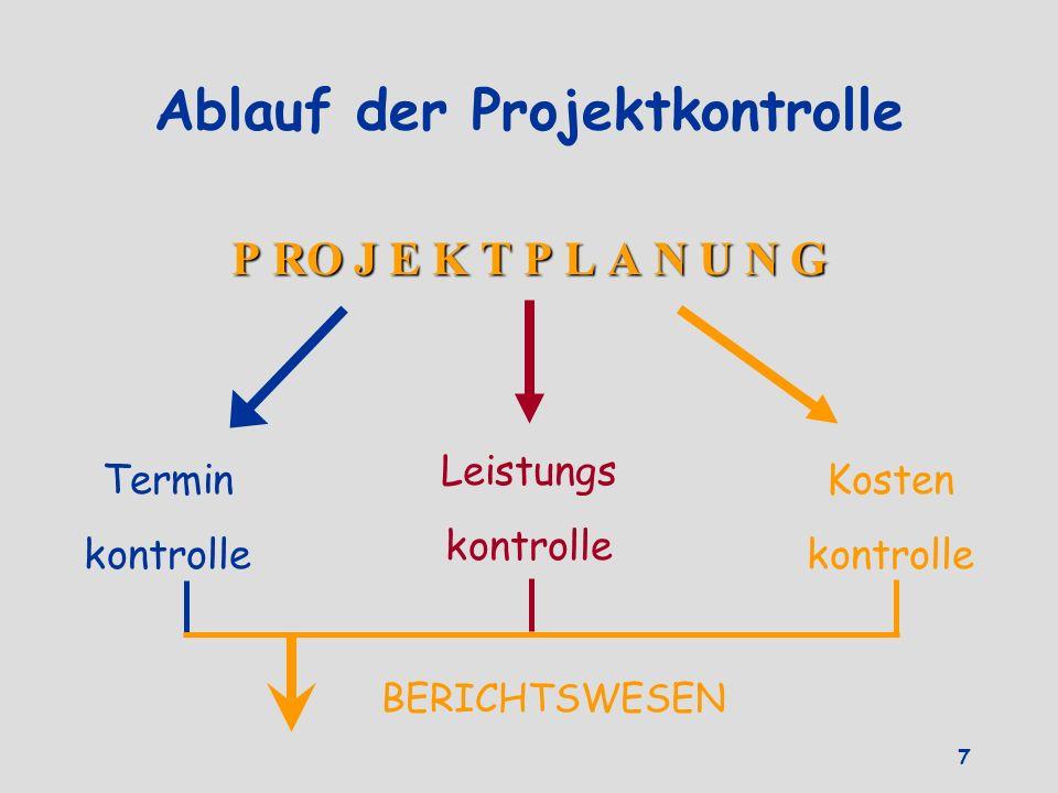Ablauf der Projektkontrolle