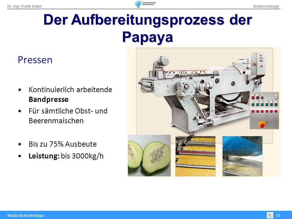 Der Aufbereitungsprozess der Papaya