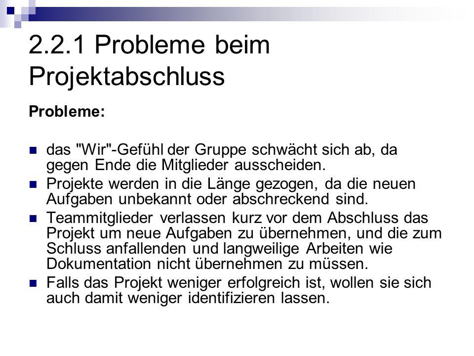 2.2.1 Probleme beim Projektabschluss