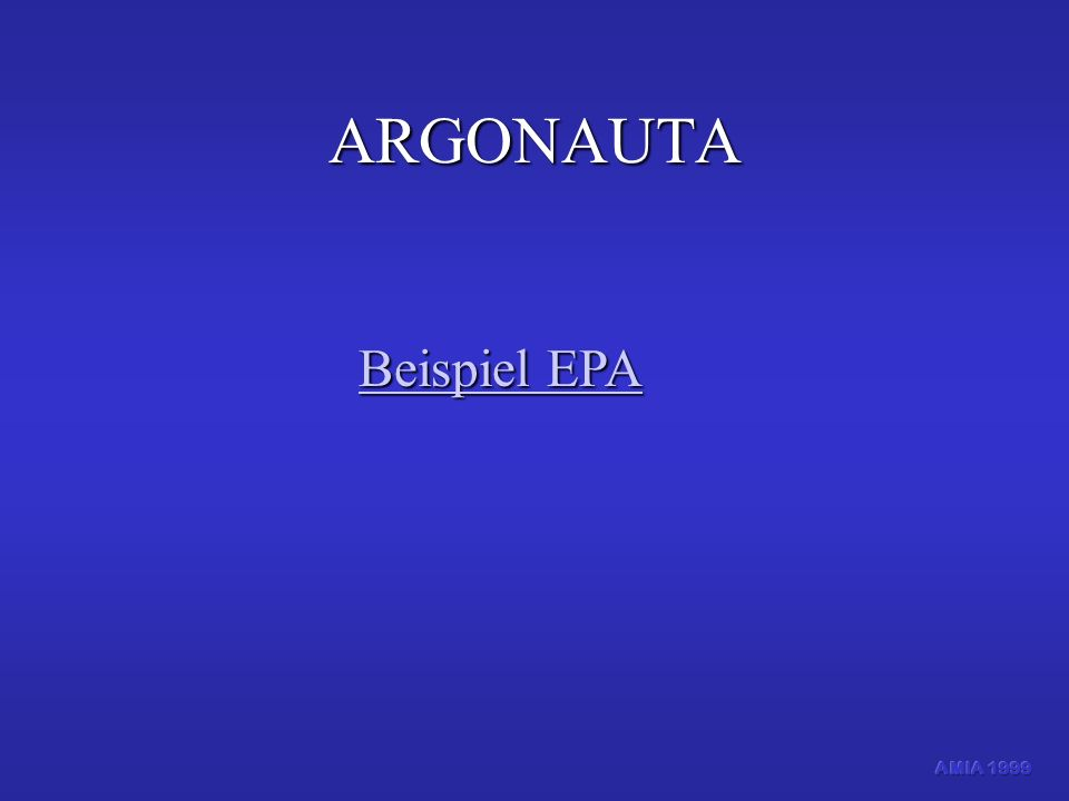 ARGONAUTA Beispiel EPA AMIA 1999