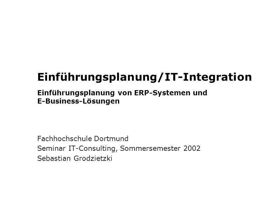 Einführungsplanung/IT-Integration Einführungsplanung von ERP-Systemen und E-Business-Lösungen