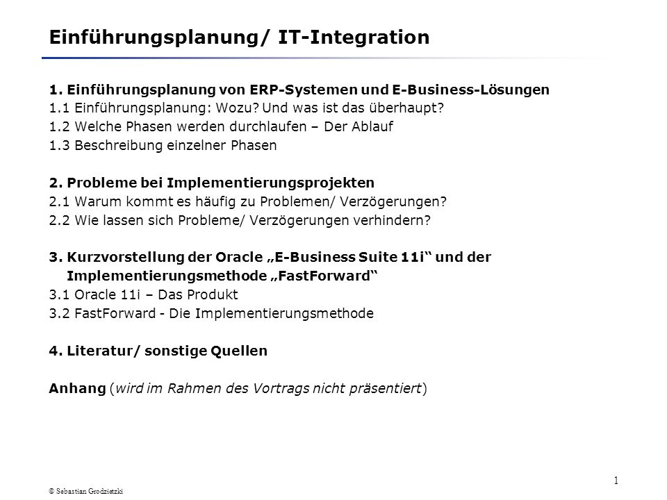 Einführungsplanung/ IT-Integration