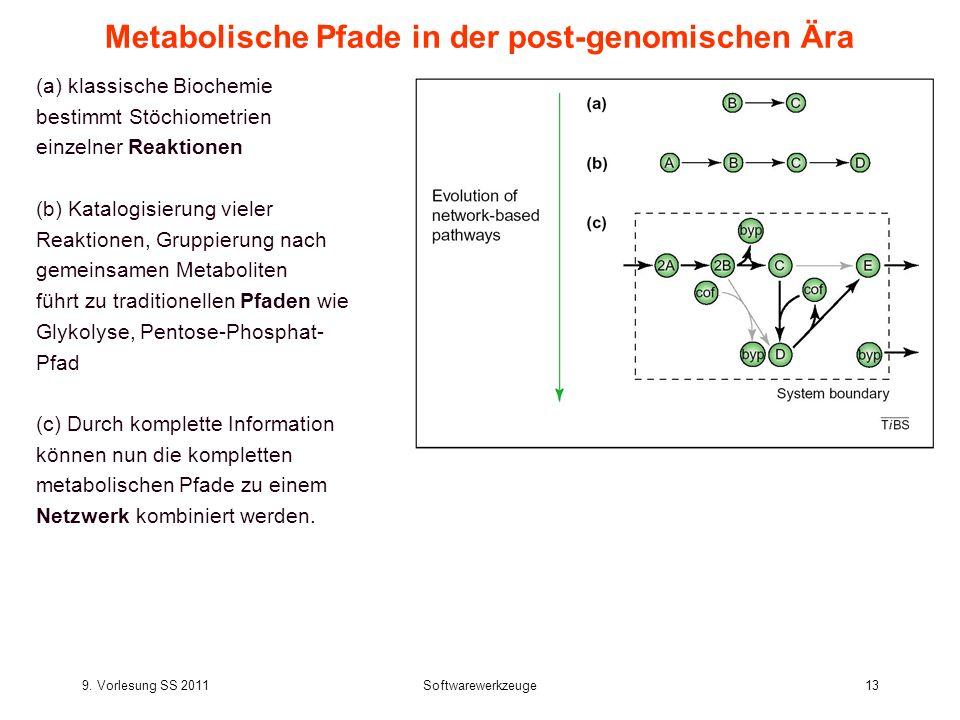 Metabolische Pfade in der post-genomischen Ära