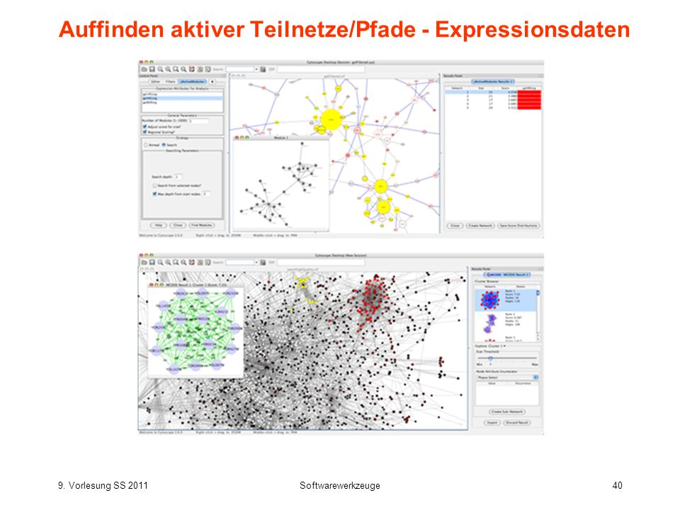 Auffinden aktiver Teilnetze/Pfade - Expressionsdaten
