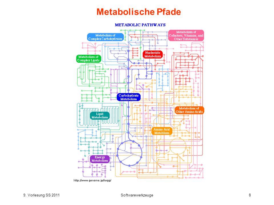 Metabolische Pfade