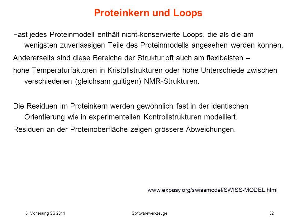 Proteinkern und Loops