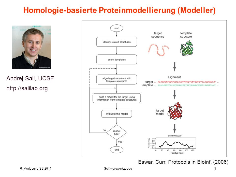 Homologie-basierte Proteinmodellierung (Modeller)