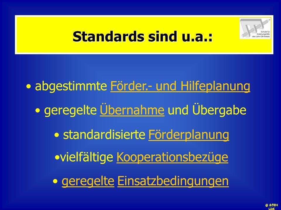Standards sind u.a.: abgestimmte Förder.- und Hilfeplanung