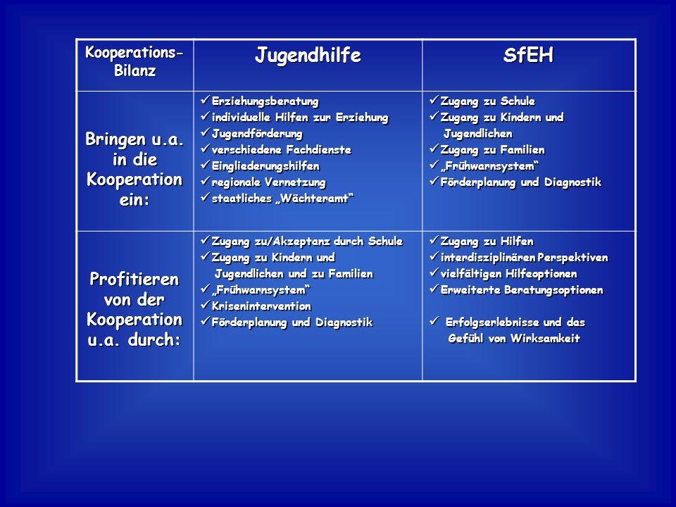 Jugendhilfe SfEH Bringen u.a. in die Kooperation ein: