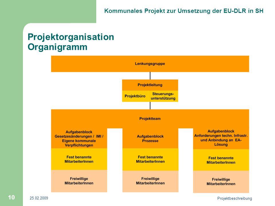 Projektorganisation Organigramm