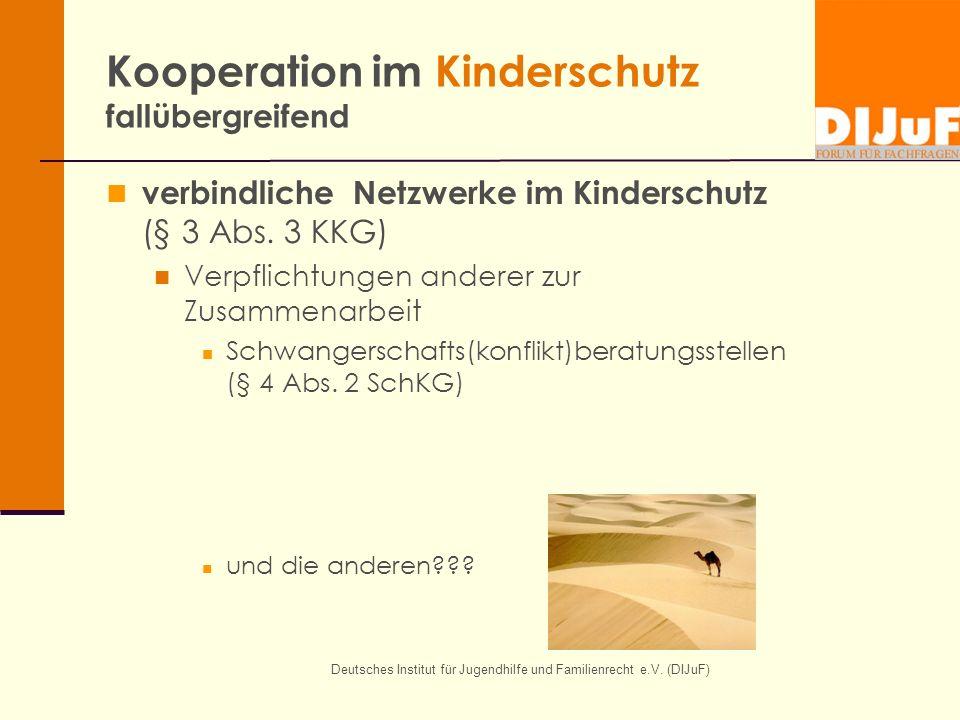 Kooperation im Kinderschutz fallübergreifend