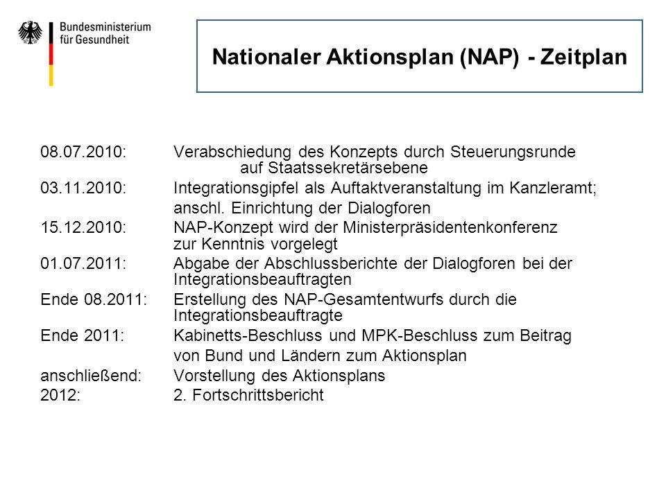 Nationaler Aktionsplan (NAP) - Zeitplan