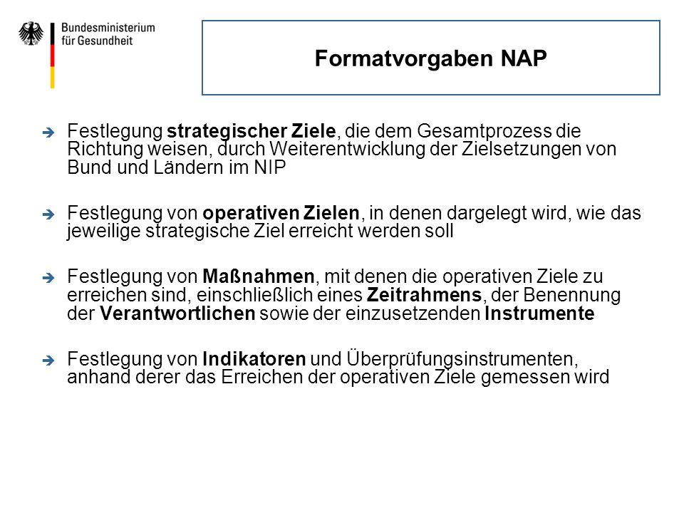 Formatvorgaben NAP