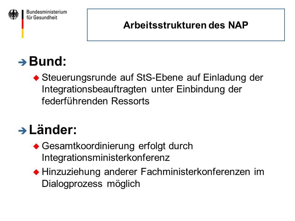 Arbeitsstrukturen des NAP
