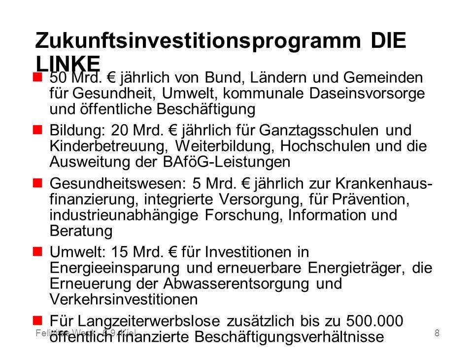 Zukunftsinvestitionsprogramm DIE LINKE