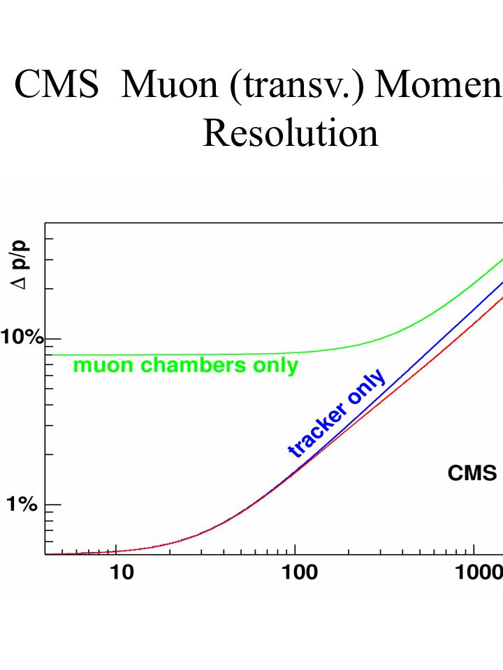 CMS Muon (transv.) Momentum Resolution