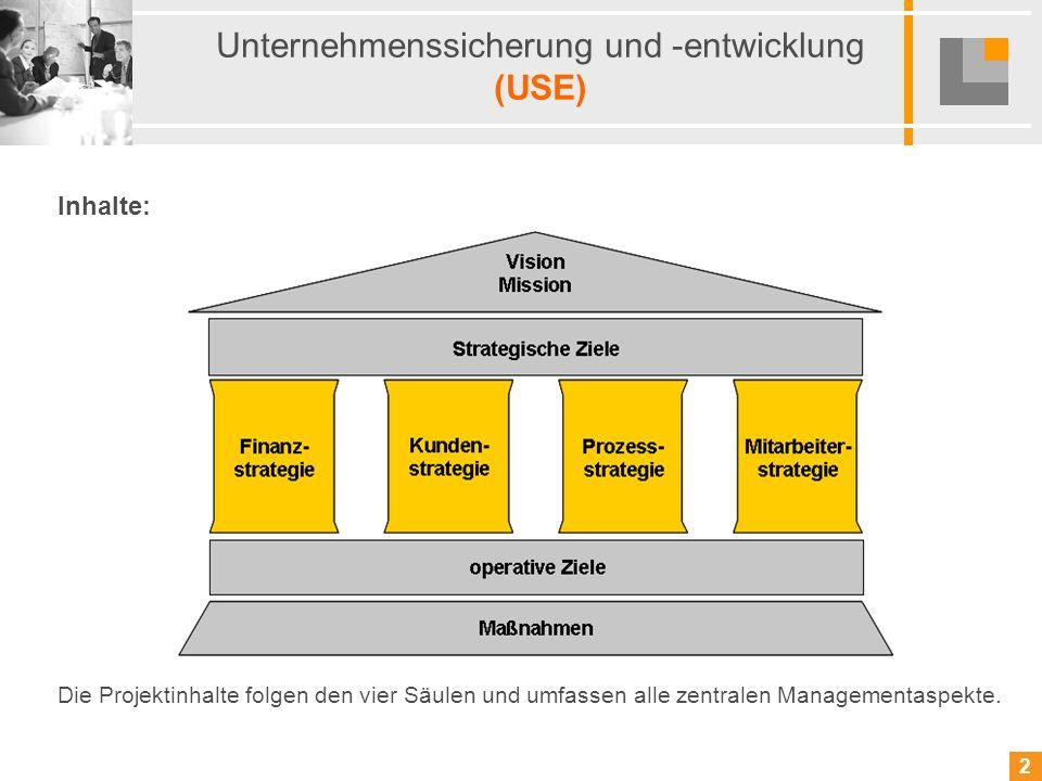 Unternehmenssicherung und -entwicklung (USE)