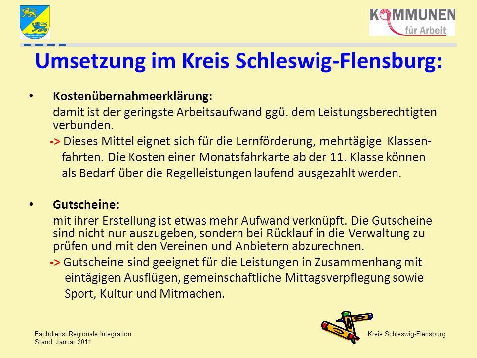 Umsetzung im Kreis Schleswig-Flensburg: