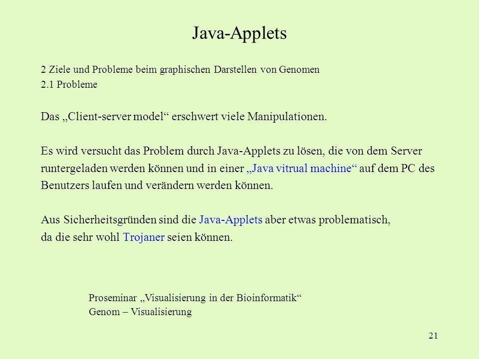 "Java-Applets Das ""Client-server model erschwert viele Manipulationen."