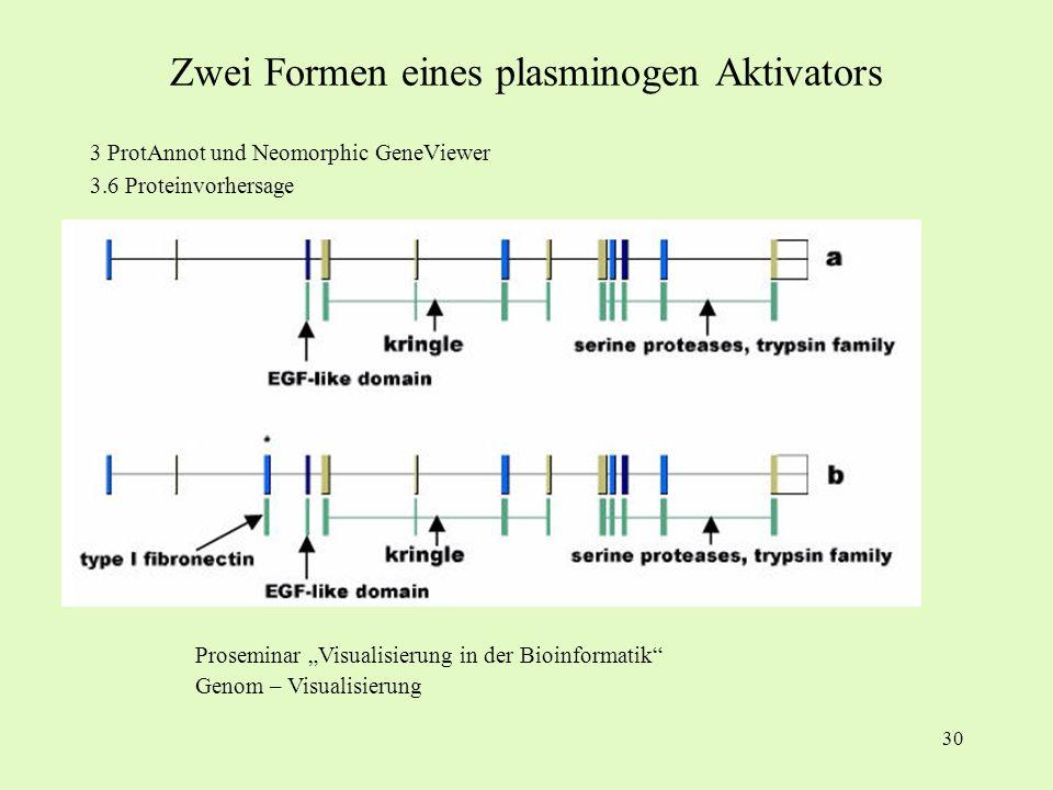 Zwei Formen eines plasminogen Aktivators