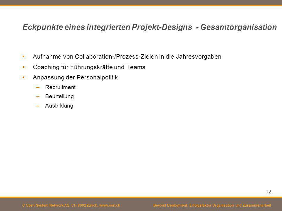Eckpunkte eines integrierten Projekt-Designs - Gesamtorganisation