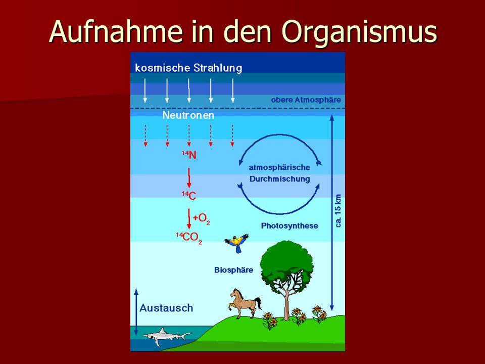 Aufnahme in den Organismus