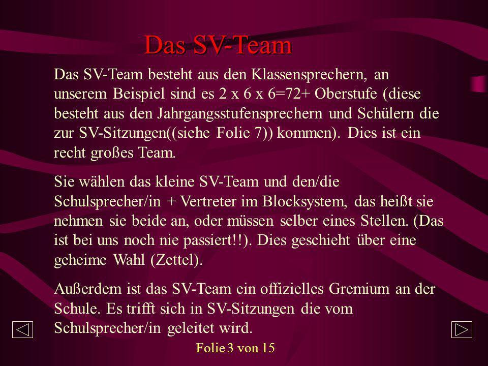 Das SV-Team