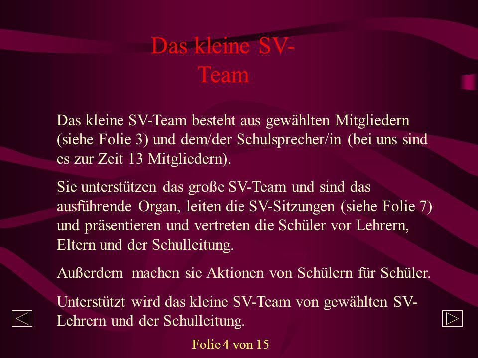 Das kleine SV-Team