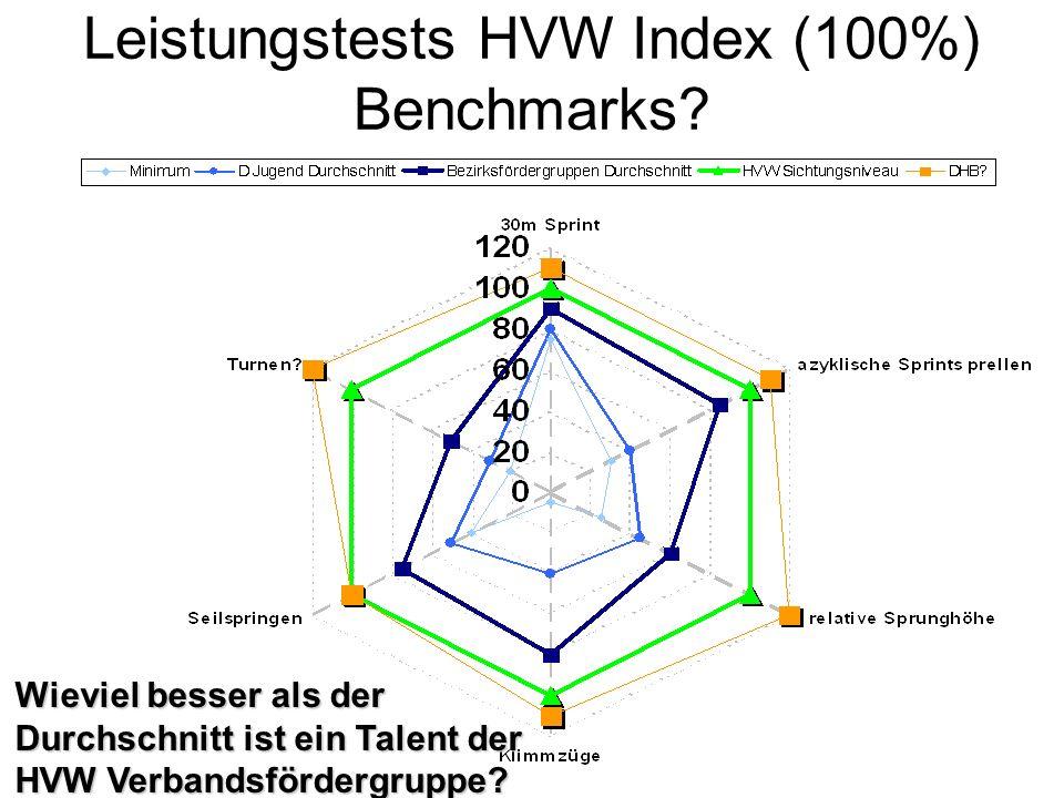 Leistungstests HVW Index (100%) Benchmarks