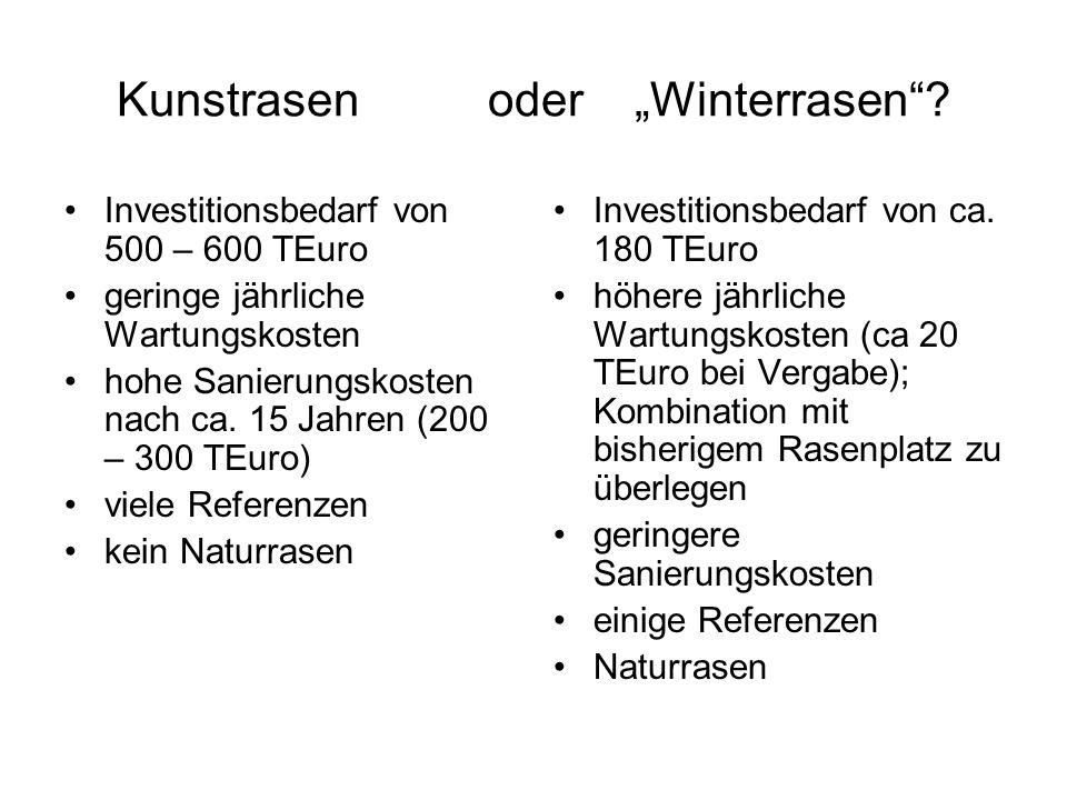 "Kunstrasen oder ""Winterrasen"