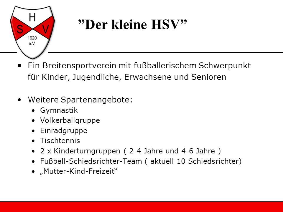Der kleine HSV Ein Breitensportverein mit fußballerischem Schwerpunkt. für Kinder, Jugendliche, Erwachsene und Senioren.