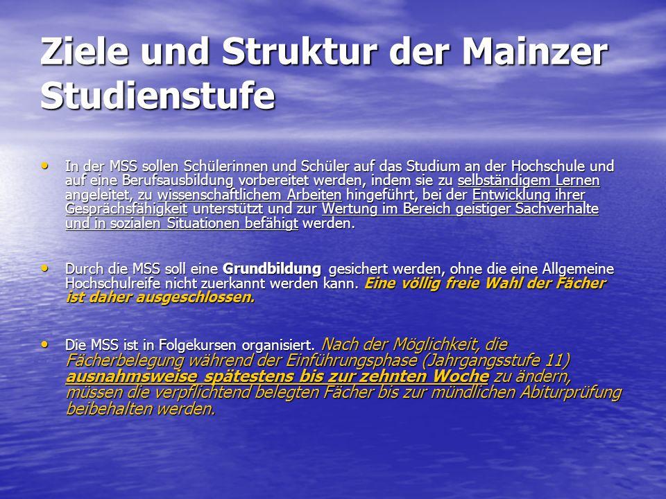 Ziele und Struktur der Mainzer Studienstufe