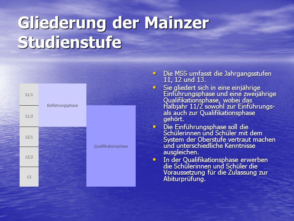Gliederung der Mainzer Studienstufe