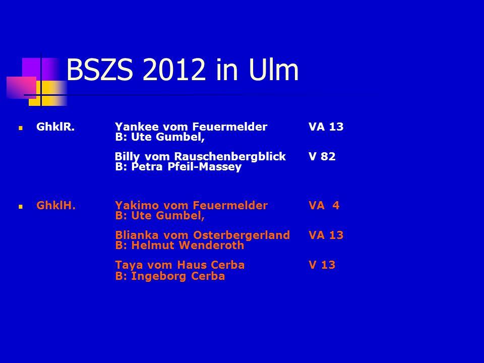 BSZS 2012 in Ulm GhklR. Yankee vom Feuermelder VA 13 B: Ute Gumbel,