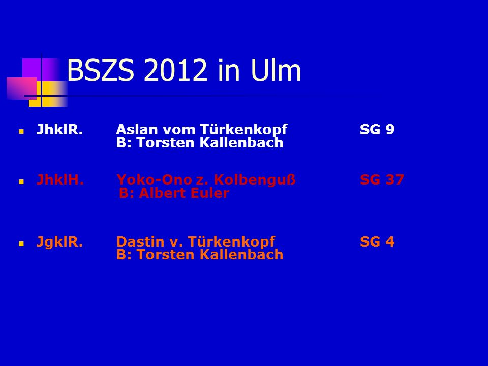 BSZS 2012 in Ulm