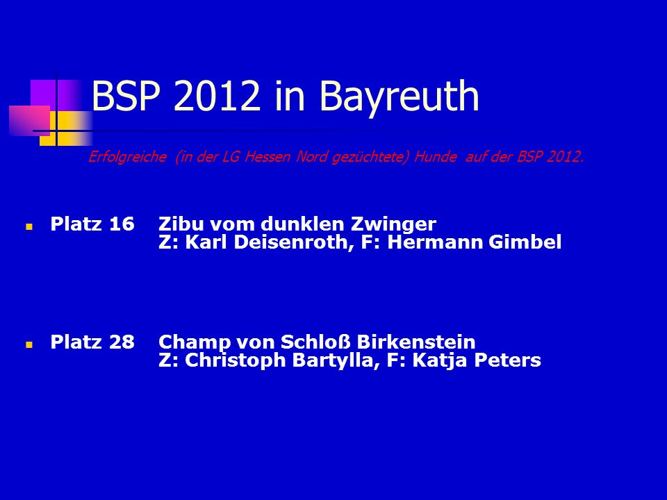BSP 2012 in BayreuthErfolgreiche (in der LG Hessen Nord gezüchtete) Hunde auf der BSP 2012.