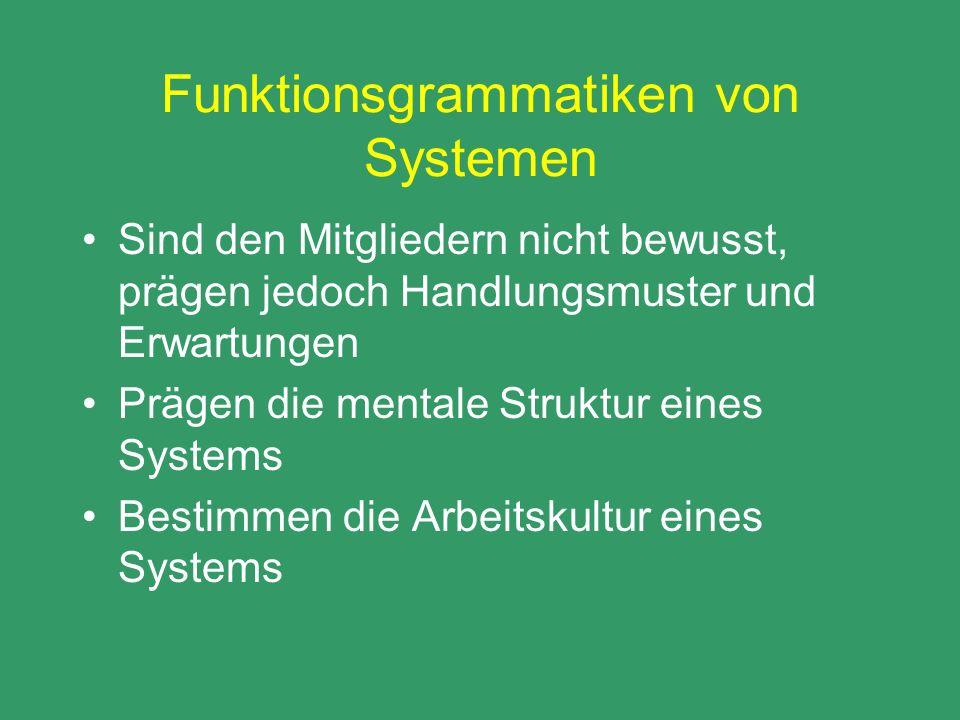 Funktionsgrammatiken von Systemen