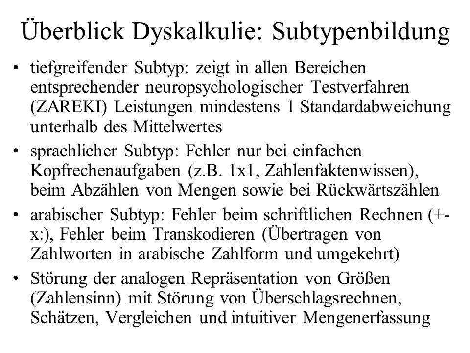 Überblick Dyskalkulie: Subtypenbildung