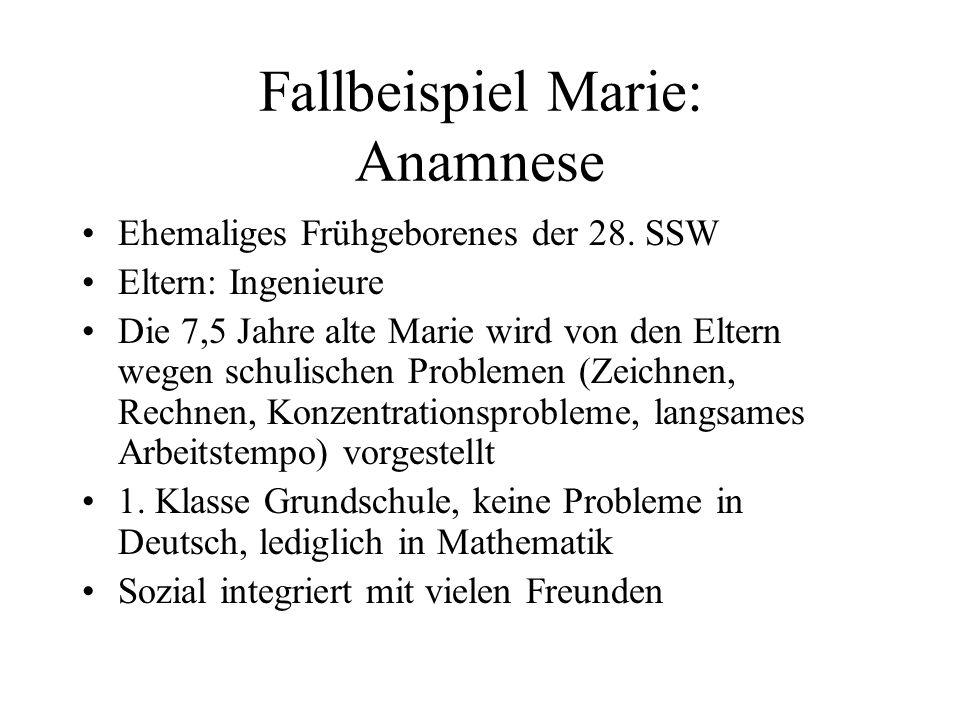 Fallbeispiel Marie: Anamnese