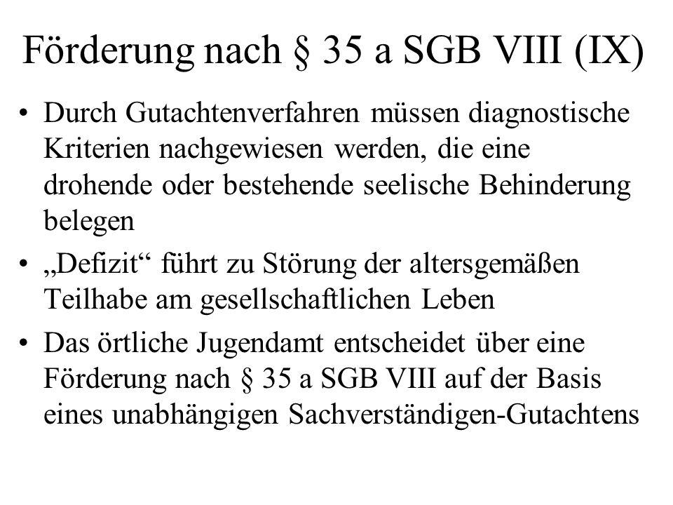 Förderung nach § 35 a SGB VIII (IX)