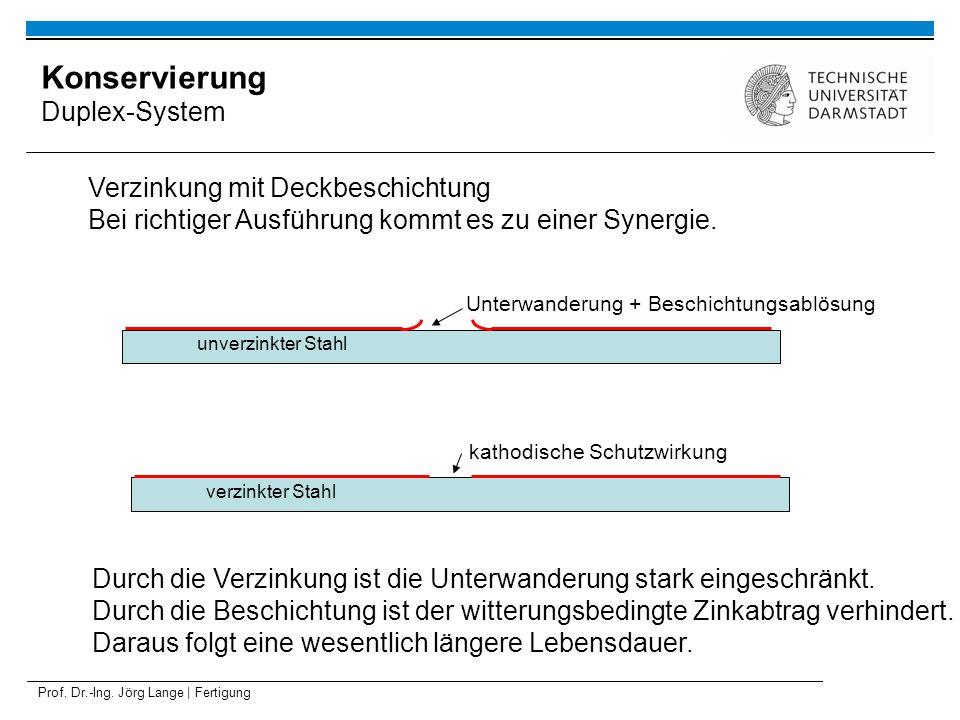 Konservierung Duplex-System