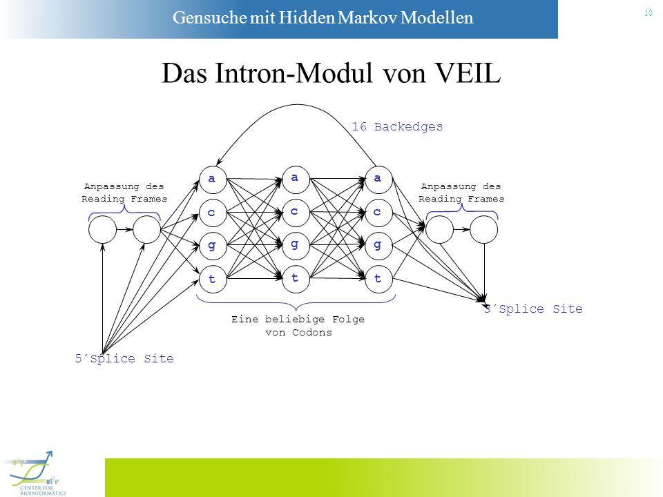Das Intron-Modul von VEIL
