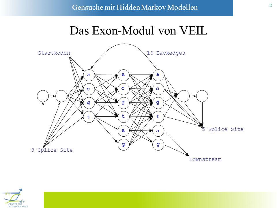 Das Exon-Modul von VEIL