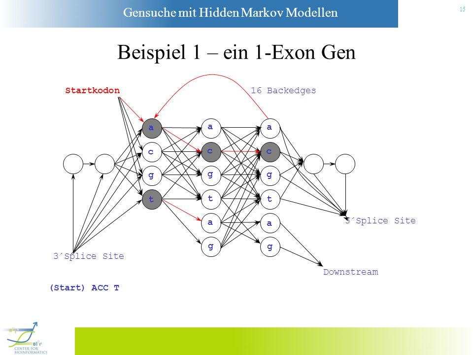 Beispiel 1 – ein 1-Exon Gen